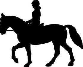 Equestrian English Moving